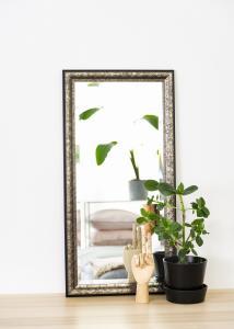 Spiegel Ottsjö Graubraun 40x80 cm