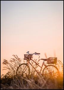 Bike Ride In The Sunset Poster