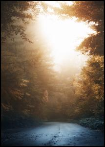 Autumn Misty Road Poster