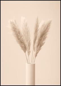 Pampas Grass III Poster