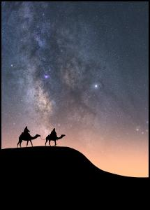 Camels Under The Stars Poster