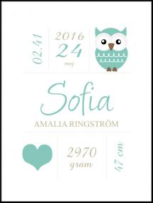 Owl Birth Poster Turquoise