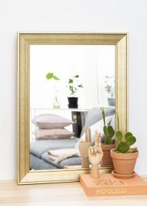 Spiegel Alina Gold 62x82 cm
